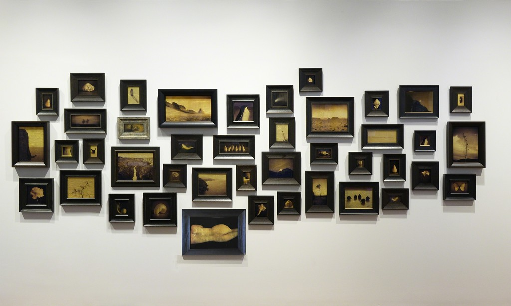 Kate Breakey: Au – Archival Pigment Prints on Glass Plate backed with 24kt Gold Leaf