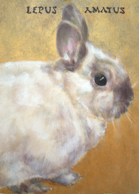 ", 'Lepus Amatus (Latin,""Beloved, Rabbit Is""),' 2016, The Art House"