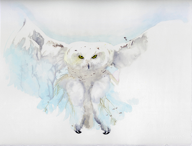 , 'Untitled (Owl),' 2014, Subliminal Projects