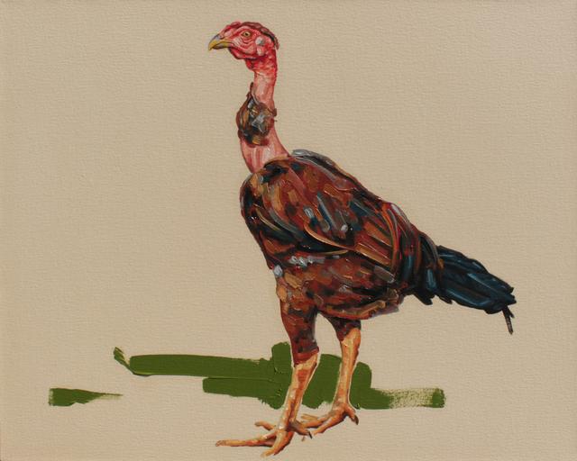 , 'from series O vendedor de galinhas: Tulim,' 2014, Baró Galeria