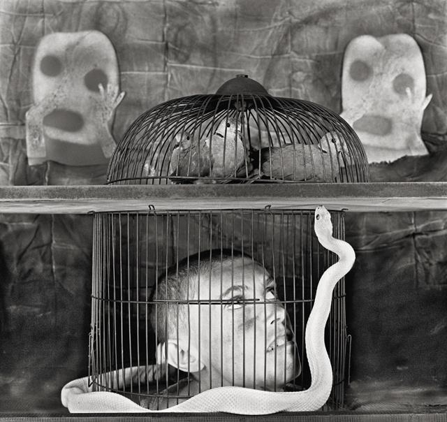 , 'Asylum of the Birds: Alter Ego.                ,' 2010, Almanaque