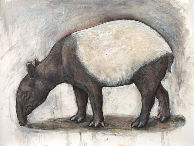 , 'Tapir,' 2012, Clark Gallery
