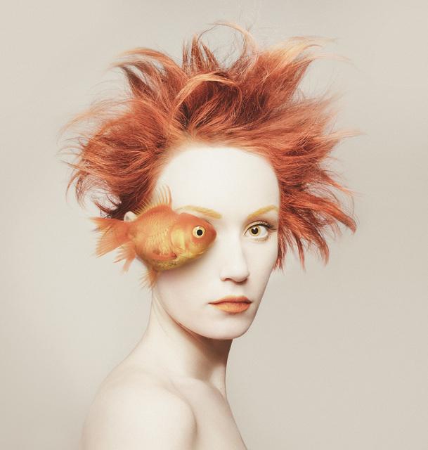 , 'Fisheye,' 2016, Anna Laudel