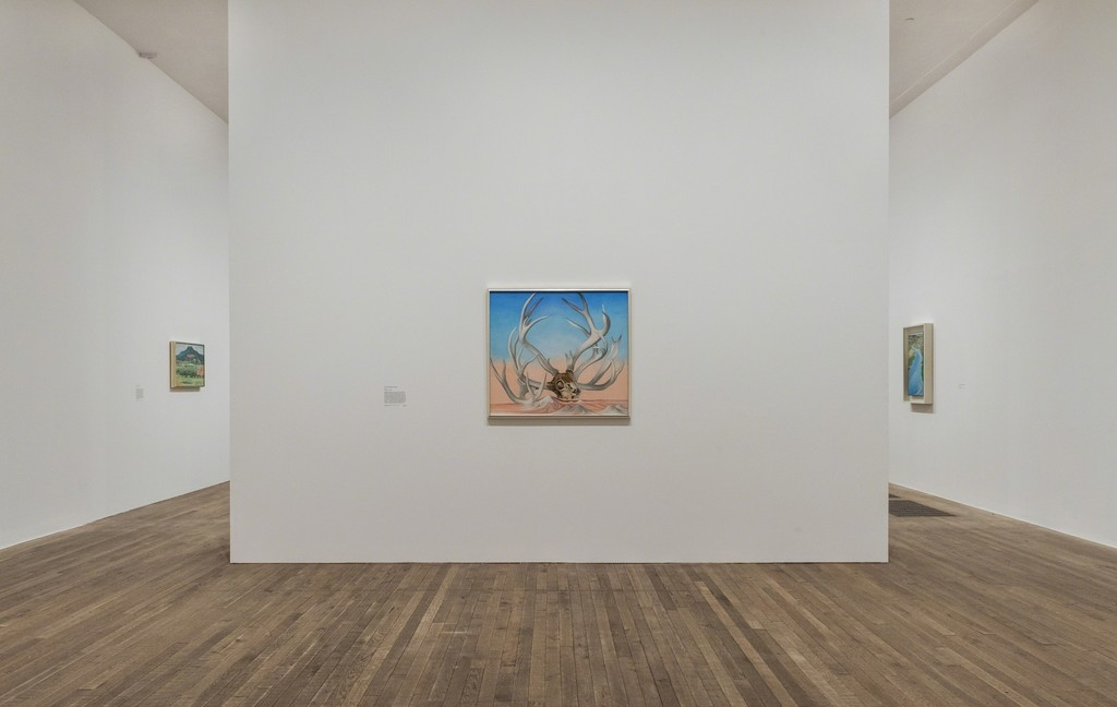 Installation shots from the Georgia O'Keeffe exhibition at Tate Modern. Georgia O'Keeffe, From the Faraway, Nearby 1937, Photograph courtesy Tate Photography