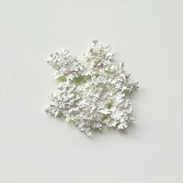 , 'Large Foliar Lichen,' 2018, SET ESPAI D'ART