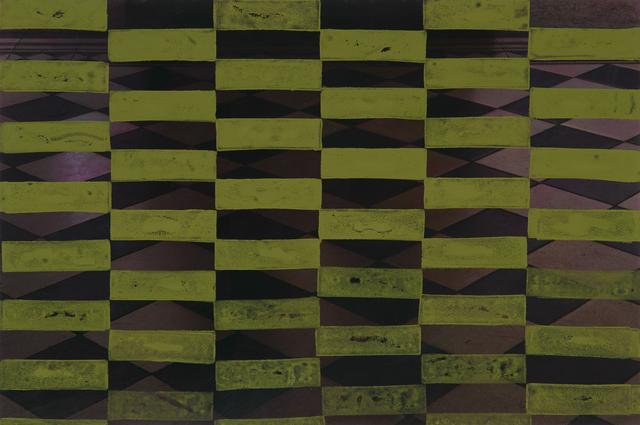 , 'On Inhabiting: Green,' 2014, Instituto de Visión
