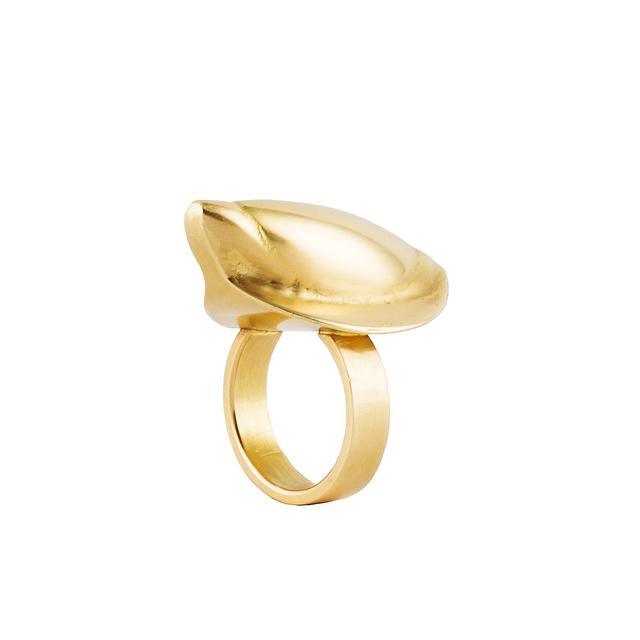 , 'Tibet, ring,' 2002, Caroline Van Hoek