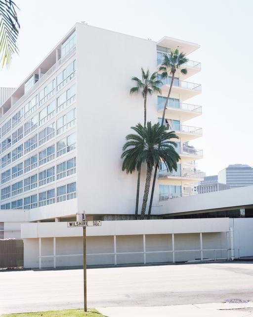 , 'Los Angeles Palms #14,' 2017, Samuel Maenhoudt Gallery