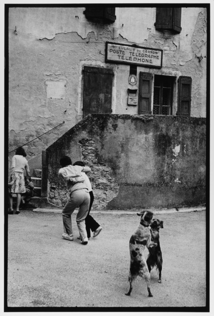 , 'Dogs Dancing, Cote D'azur, France ,' 1980, Gallery 270