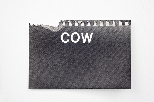 , 'Cow,' 2016, Wil Aballe Art Projects | WAAP