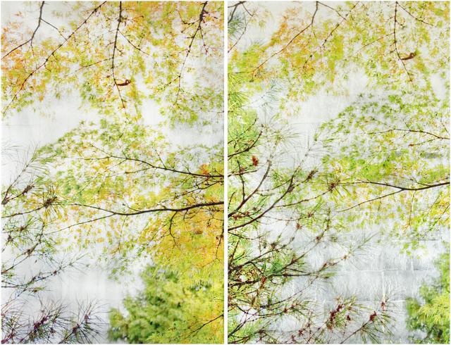 Susan Goldsmith, 'Autumn Sampling II (Diptych)', 2019, Gallery Henoch