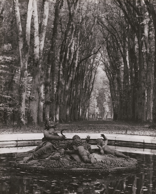 André Kertész, 'Versailles (Rows of Trees, Fountain)', Contemporary Works/Vintage Works