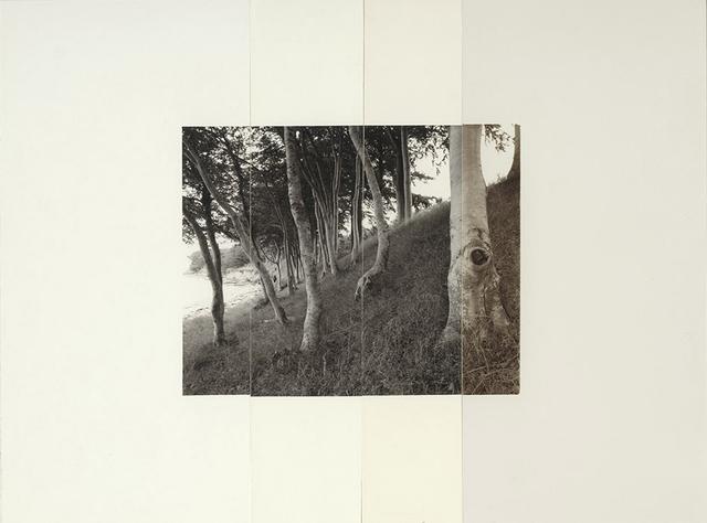 , 'Asnæs-1C-99_S-T6B6_F.,' 2000, Galerie f5,6