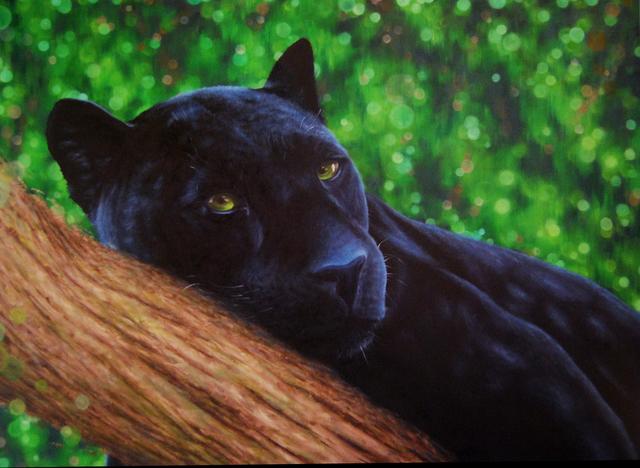 , 'Meow II,' 2016, Woodward Gallery