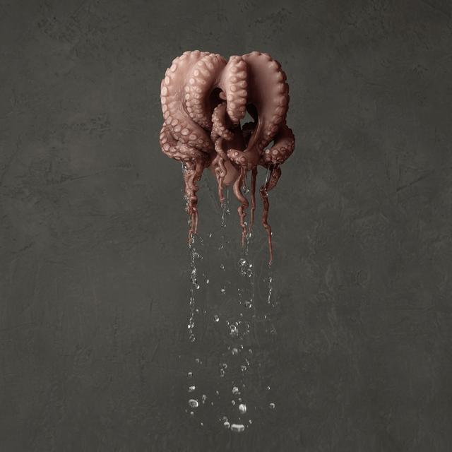 , 'Octopus,' 2014, Photo12 Galerie