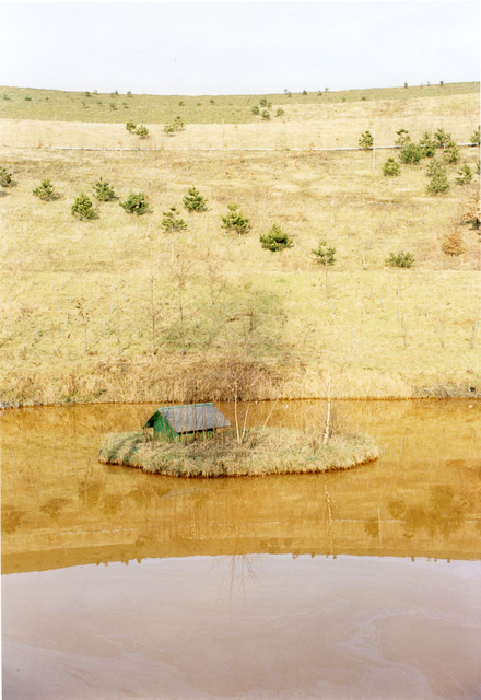 Jitka Hanzlová, 'Untitled #18 (Yellow Sea) from the series Hier', Yancey Richardson Gallery