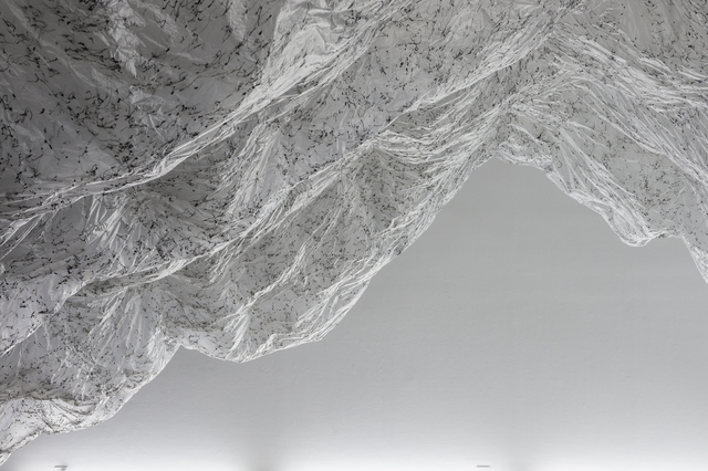 , 'reverse of volume RG,' 2012, Rice University Art Gallery