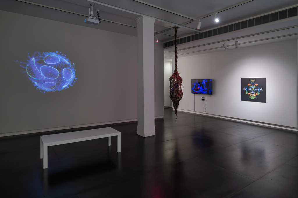 Works by Iyvone Khoo in Absence of Myth. Photo by Mario Gallucci.