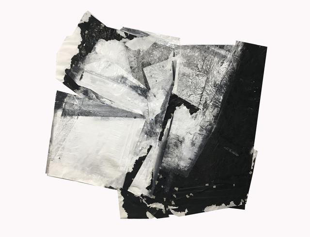 , 'Cluster No. 4 合体4号,' 2017, Ink Studio