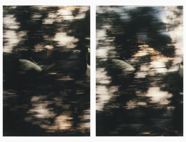 Sam Shmith, 'Untitled (figure, glass, landscape / consecutive)', 2019, ARC ONE Gallery