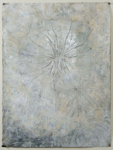 , ' Umbelliferae (seed head),' 2005-2008, Goodwin Fine Art