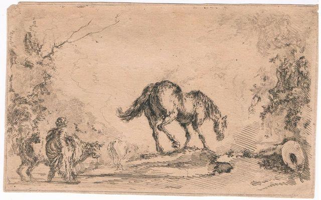 """Stefano Della Bella, 'Free Horse, from """"Diversi capricci""""', ca. 1650, Sylvan Cole Gallery"""
