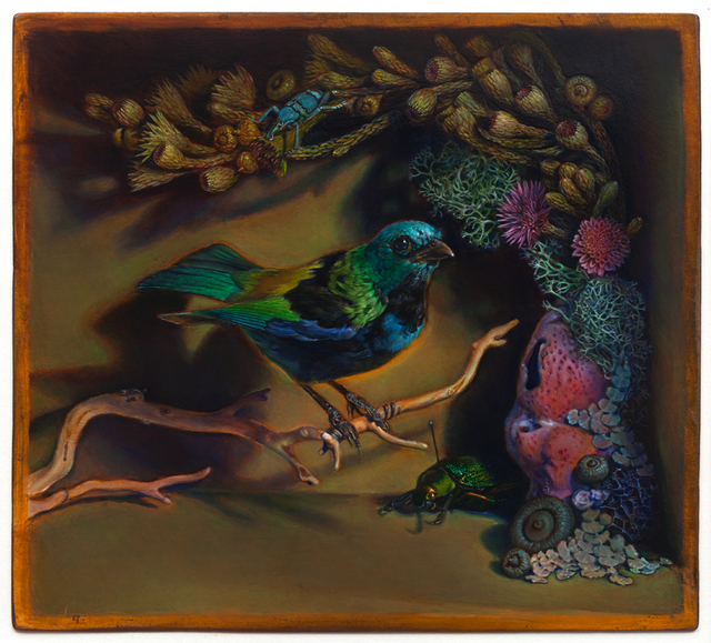 Kevin King, 'Diorama with Green-headed Tanager', 2014, Jason McCoy Gallery