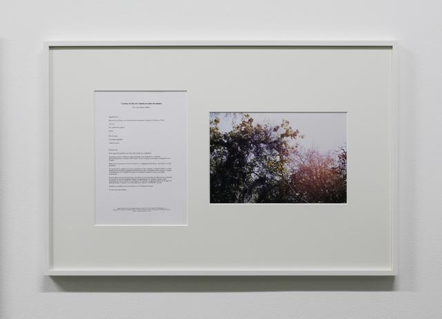 , 'Segundo apunte hacia una clasificación gastronómica de la Casa-Estudio Luis Barragán,' 2010, Taka Ishii Gallery