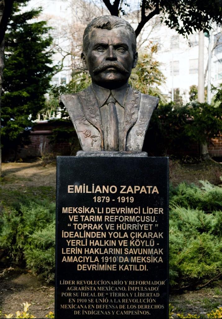 Zeyno Pekünlü, 'Zapata İstanbul'da / Zapata in Istanbul,' 2013, Sanatorium