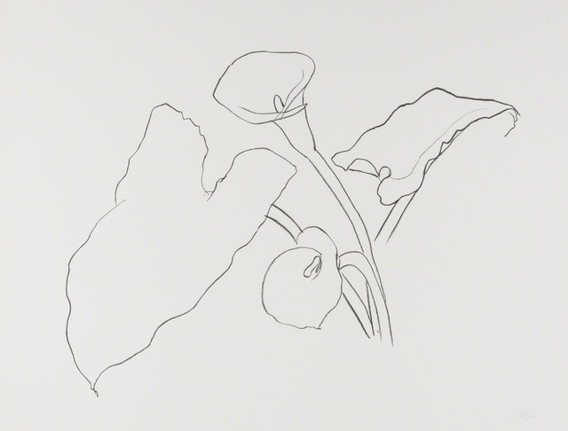, 'Calla Lily I,'  1983-85, Susan Sheehan Gallery