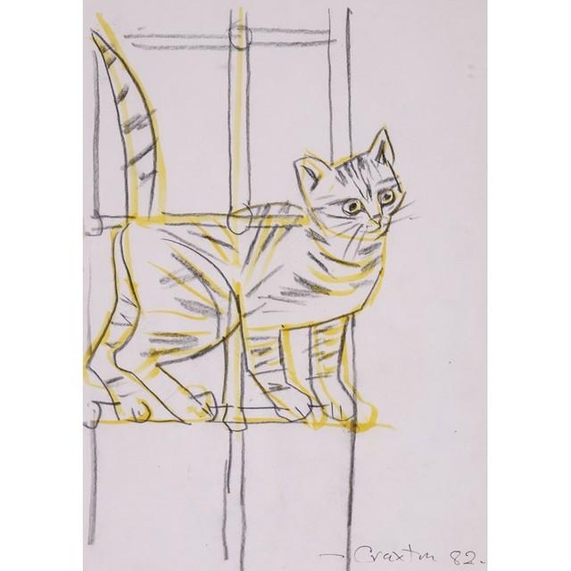 , 'Cat in a Window,' 1982, Osborne Samuel