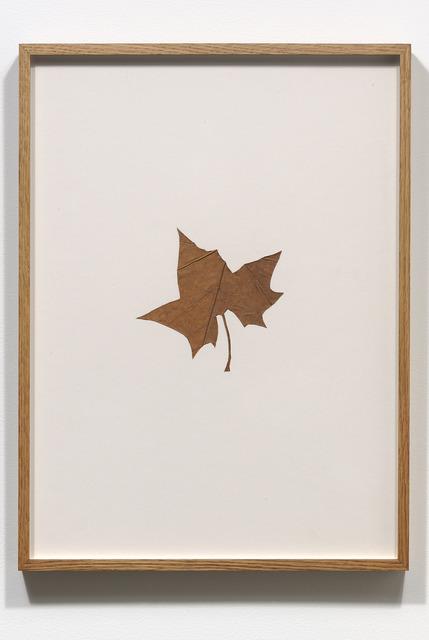 , 'Hybrids (VIII),' 1978-1979, Jessica Silverman Gallery