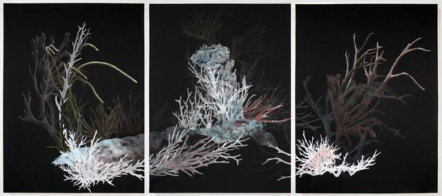 , 'Bleachy Reef,' 2017, Childs Gallery