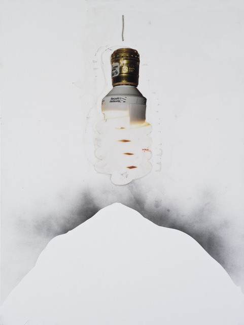 , 'Light Source (harmony electric),' 2014, Galerie Nathalie Obadia
