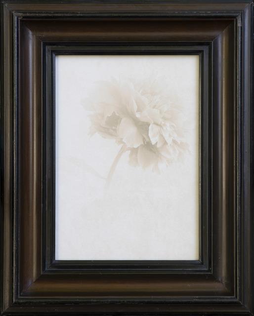 Jefferson Hayman, 'Auroral', Gilman Contemporary