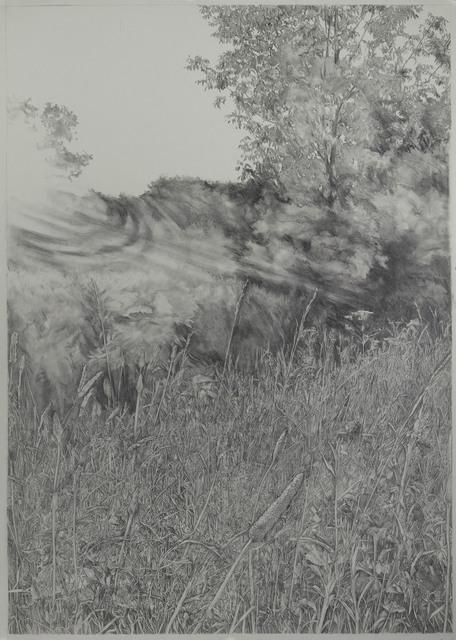 , 'Diana's Field 3,' 2018, Resource Art