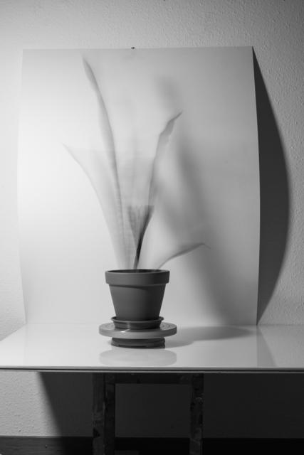 , 'Still LIfe (moving sculpture)II,' 2016, Galerie Laurence Bernard