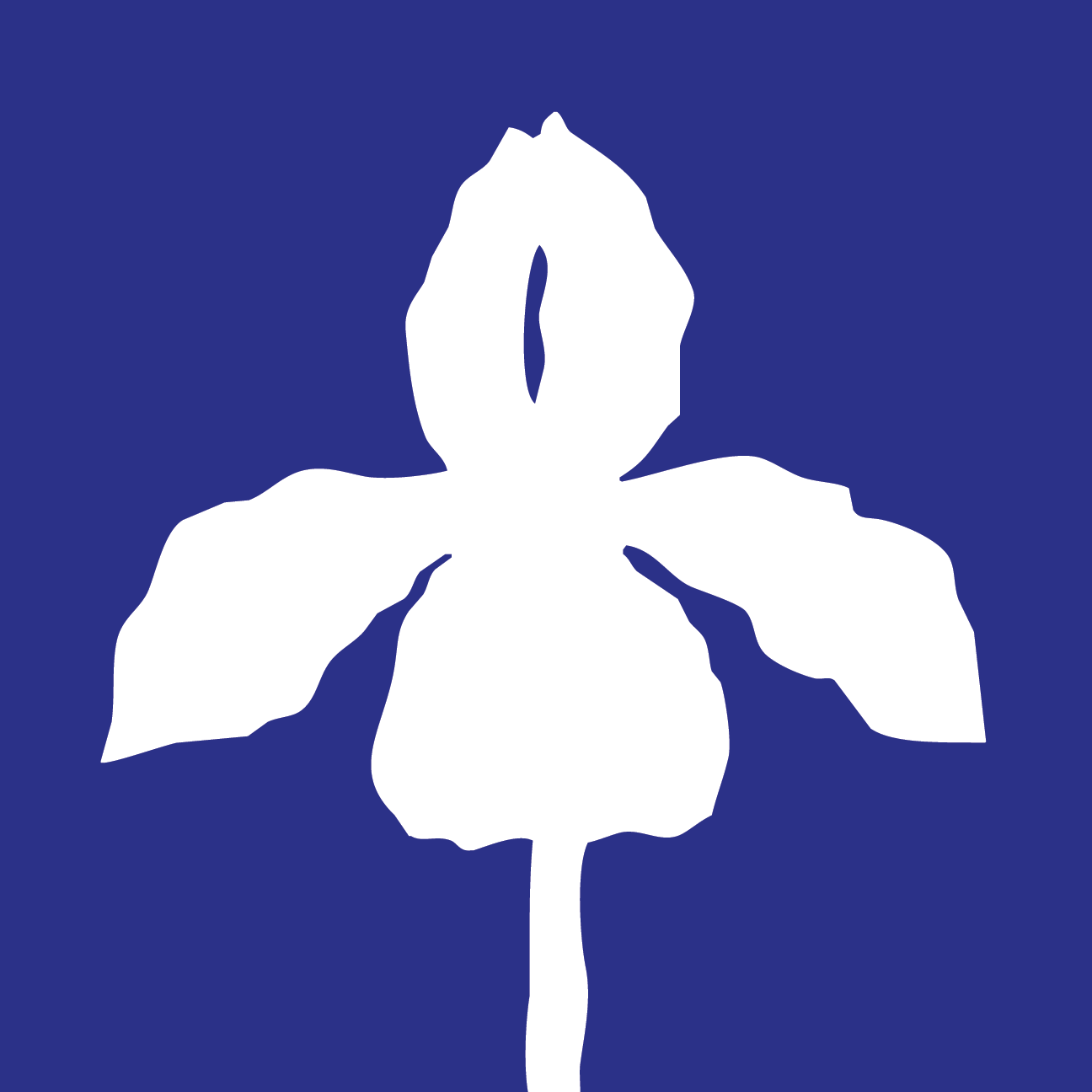Iris Project