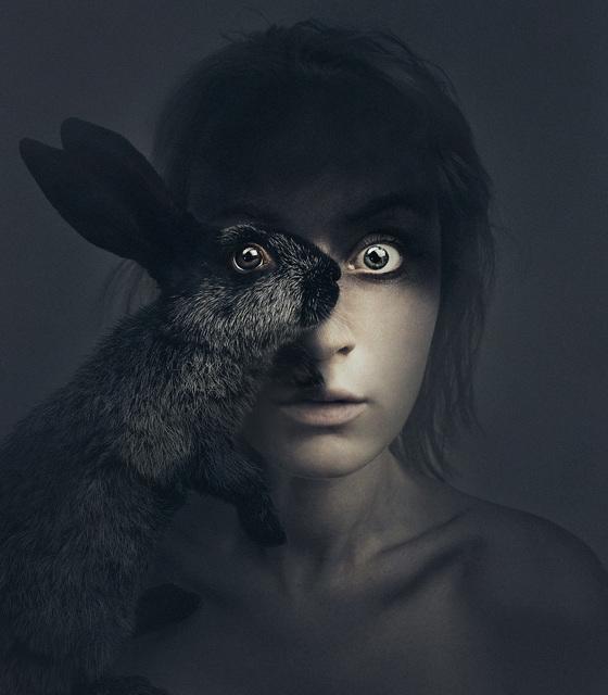 , 'Rabbit In Your Headlights,' 2016, Anna Laudel
