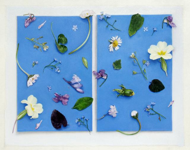 , 'Illuminated Manuscript,' 2015, Purdy Hicks Gallery
