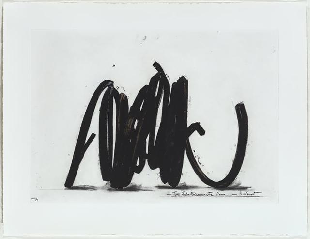 Bernar Venet, 'Two Indeterminate Lines (I)', 2014, Jim Kempner Fine Art