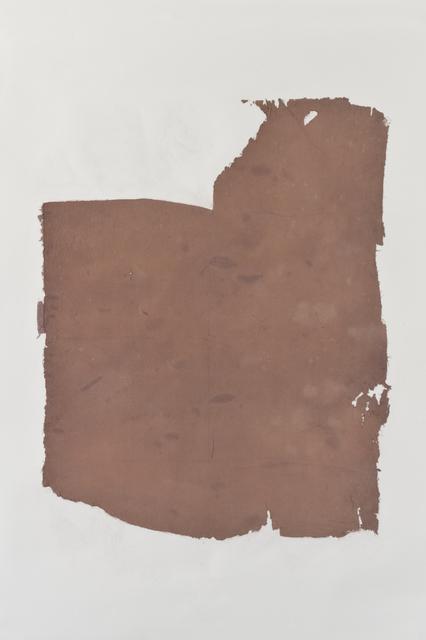, 'Purple oxidation (stage 4),' 2015, ProjecteSD