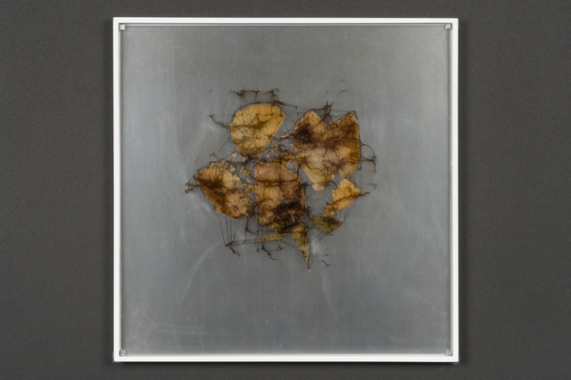 , 'elementum #2,' 2018, Takuro Someya Contemporary Art