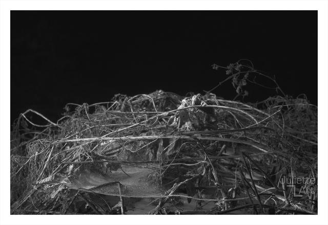 , 'The Light of Dark Night No.28,' 2013, Juliette Culture and Art Development Co. Ltd.