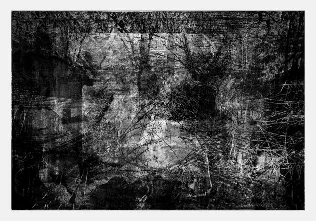 , 'Ancholia Ancholiae,' 2012, MLF   MARIE-LAURE FLEISCH