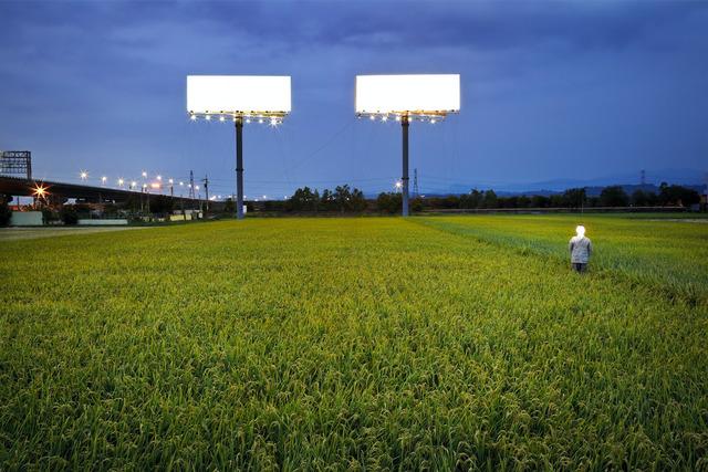 , 'T-Bar and Rice Field,' 2011, POCKET FINE ARTS