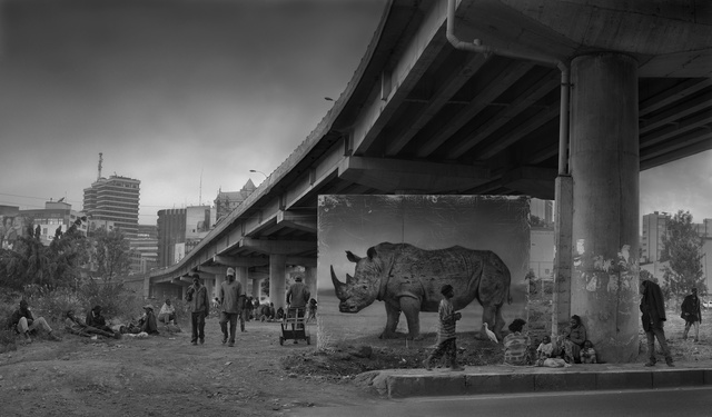 , 'Underpass with Rhino & Egret,' 2014, Edwynn Houk Gallery