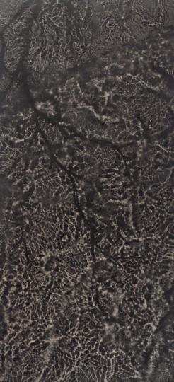, 'Silver Birch,' 2018, Purdy Hicks Gallery
