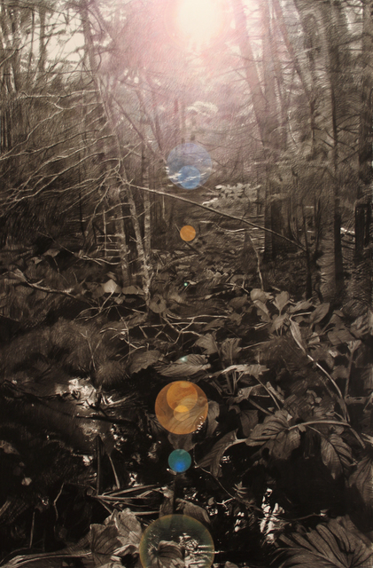 , 'Untitled 3 (Land Porn Series),' 2012, David B. Smith Gallery