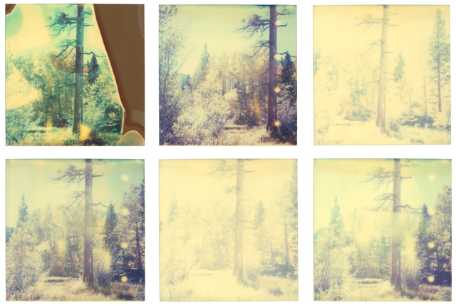 Stefanie Schneider, 'In The Range Of Light III - 6 pieces, analog, based on a Polaroid', 2003, Instantdreams